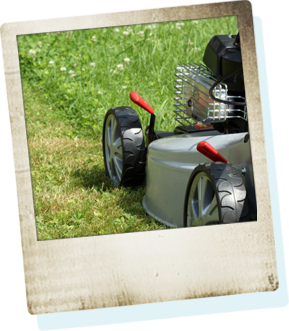Earth Smart Property Solutions offers lawn care and maintenance